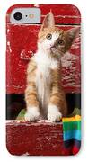 Orange Tabby Kitten In Red Drawer  IPhone Case