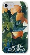 Oranges On A Branch IPhone Case by Winslow Homer
