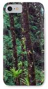 Palm Trunks And Waterfall El Yunque IPhone Case