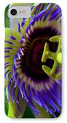 Passion-fruit Flower IPhone Case by Betsy Knapp
