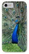 Peacocks Glory IPhone Case