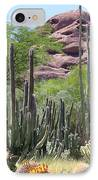 Phoenix Botanical Garden IPhone Case by Carol Groenen
