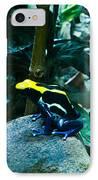 Poison Dart Frog Poised For Leap IPhone Case by Douglas Barnett