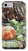 Pumpkins On Roof IPhone Case