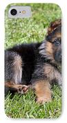 Puppy In The Spring IPhone Case by Sandy Keeton