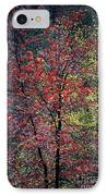 Red And Yellow Leaves Abstract Vertical Number 1 IPhone Case by Heather Kirk