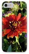 Red Gaillardia IPhone Case by Douglas Barnett