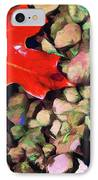 Red On The Rocks IPhone Case by Jeff Kolker