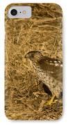 Red Tail Hawk Walking IPhone Case by Douglas Barnett