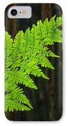 Redwood Tree Forest Ferns Art Prints Giclee Baslee Troutman IPhone Case by Baslee Troutman