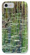 Reflections On Duck Pond IPhone Case