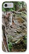 Roots - Welcome To Olympic National Park Wa Usa IPhone Case by Christine Till