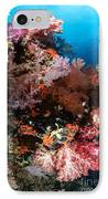 Sea Fans And Soft Coral, Fiji IPhone Case by Todd Winner
