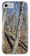 Shagbark Hickory Forest  IPhone Case