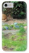 Siesta Time IPhone Case by Suzanne Gaff