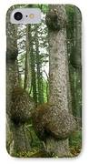 Sitka Spruce Burls On The Olympic Coast Olympic National Park Wa IPhone Case by Christine Till