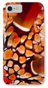Slate Pencil Urchin IPhone Case