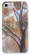 Snowy Autumn Landscape IPhone Case by James BO  Insogna