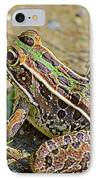 Southern Leopard Frog IPhone Case