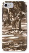 Southern Sunlight On Live Oaks IPhone Case by Carol Groenen