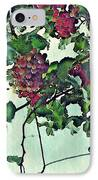 Spanish Grapes IPhone Case by Sarah Loft