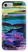 Stillness Of Color And Light IPhone Case
