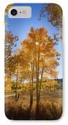 Sun Through Aspens IPhone Case by Ron Dahlquist - Printscapes