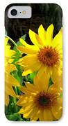Sunlit Wild Sunflowers IPhone Case