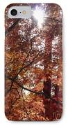 Sunny Autumn Day Poster IPhone Case