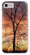 Sunrise December 16th 2010 IPhone Case by James BO  Insogna