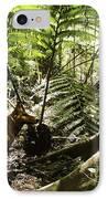 Tasmanian Wolf In Forest IPhone Case by Christian Darkin