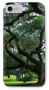 The Old Oak IPhone Case by Perry Webster