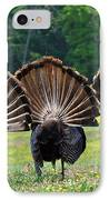 Three Fans IPhone Case by Todd Hostetter