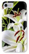 Three White Lilies IPhone Case by Garry Gay