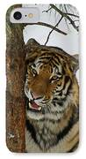 Tiger 3 IPhone Case by Ernie Echols