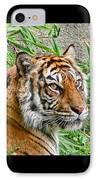 Tiger Portrait IPhone Case by Jennie Marie Schell
