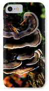 Tree Mushrooms IPhone Case by David Patterson