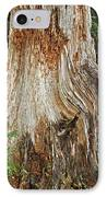 Trees On The Trails - Olympic National Park Wa IPhone Case