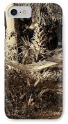 Tropical Hammock IPhone Case