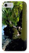 Tropical Spring IPhone Case