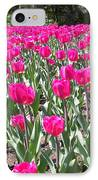 Tulips IPhone Case