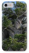 Twisted And Gnarled Bristlecone Pine Tree Trunk Above Crater Lake - Oregon IPhone Case by Christine Till