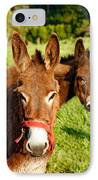 Two Donkeys IPhone Case