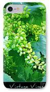 Vintage Vines  IPhone Case by Carol Groenen