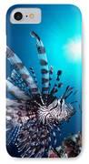 Volitan Lionfish IPhone Case by Steve Rosenberg - Printscapes