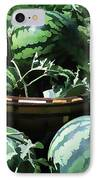 Watermelon In A Vegetable Garden IPhone Case by Lanjee Chee