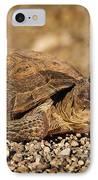 Wild Desert Tortoise Saguaro National Park IPhone Case by Steve Gadomski