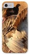 Wild Turkey Tom Following Hens IPhone Case by Max Allen