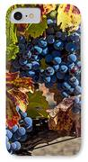 Wine Grapes Napa Valley IPhone Case by Garry Gay