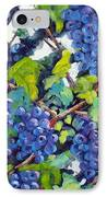 Wine On The Vine IPhone Case by Richard T Pranke